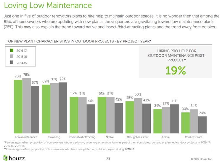 Backyard curb appeal: low maintenance plants