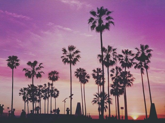 find a real estate agent in miami beach florida