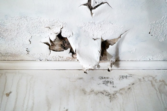 water damage home inspection