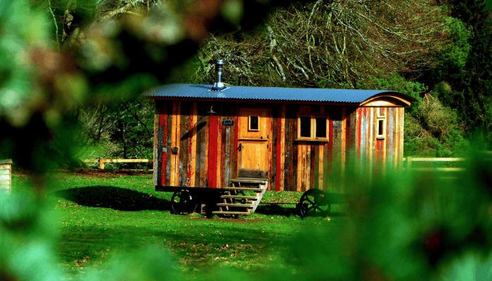 tiny home downsizing