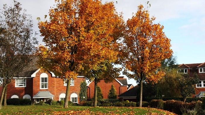Une maison en automne qui utilise la photographie pour mettre en valeur l'immobilier.