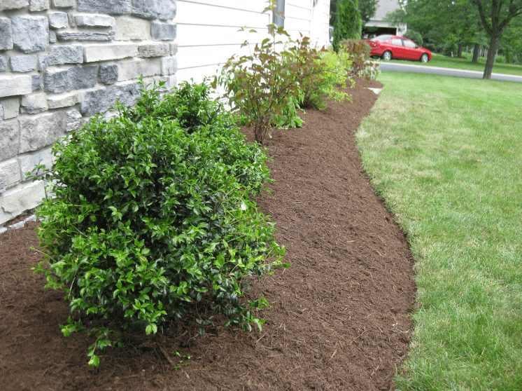 split-level-landscaping-curb-appeal