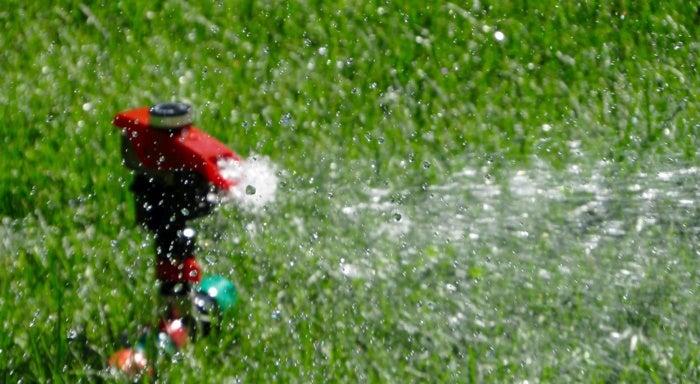 Red sprinkler watering home's lawn in spring.