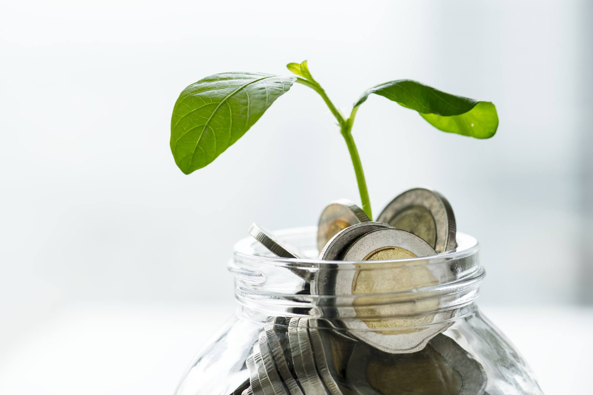 Jar of coins with plant life growing, showing home equity growth.