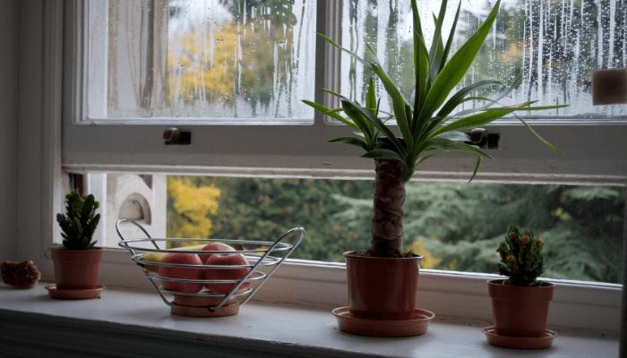 An open window in a house.