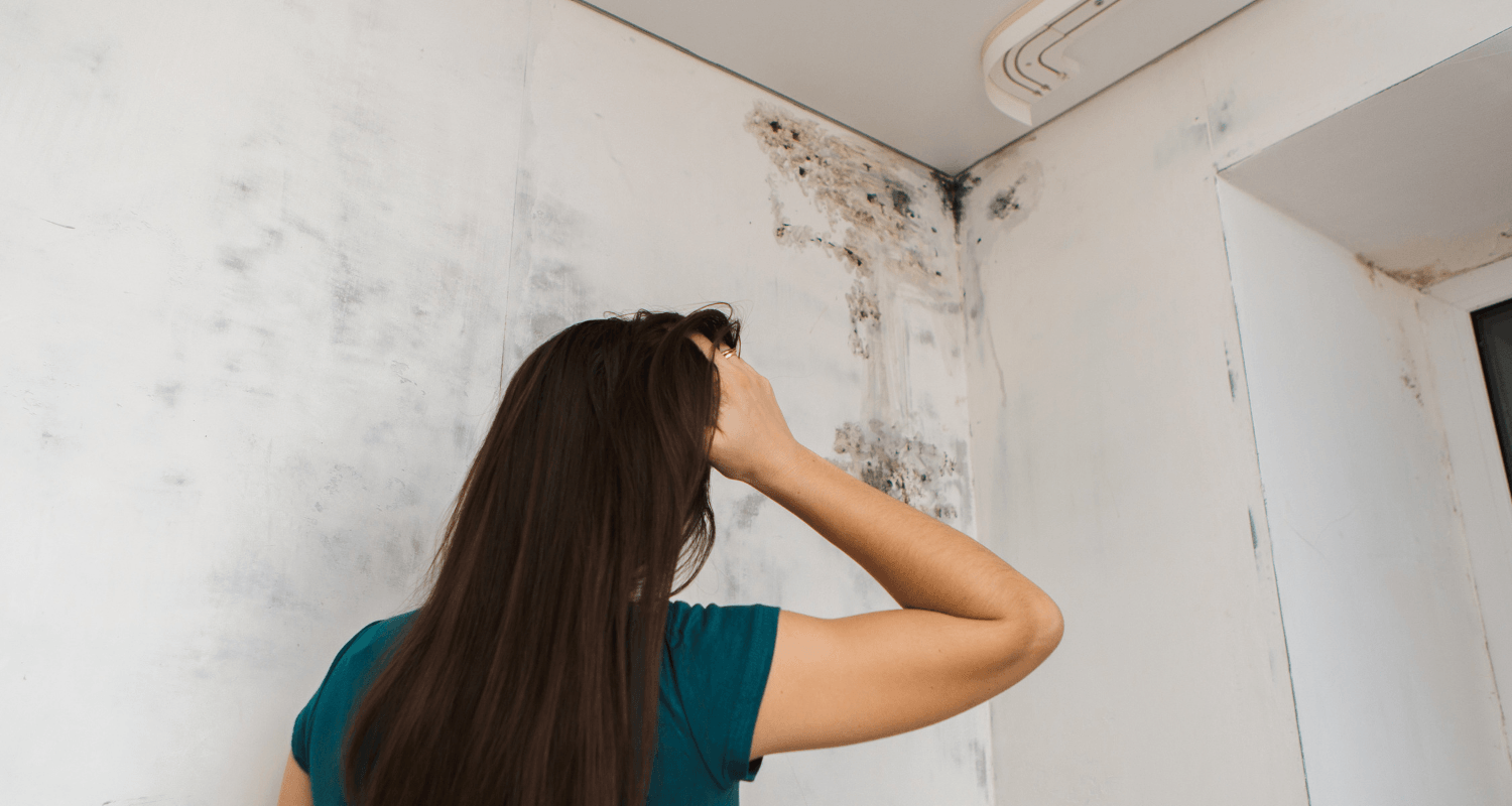 A woman staring a mold in a house that is for sale.