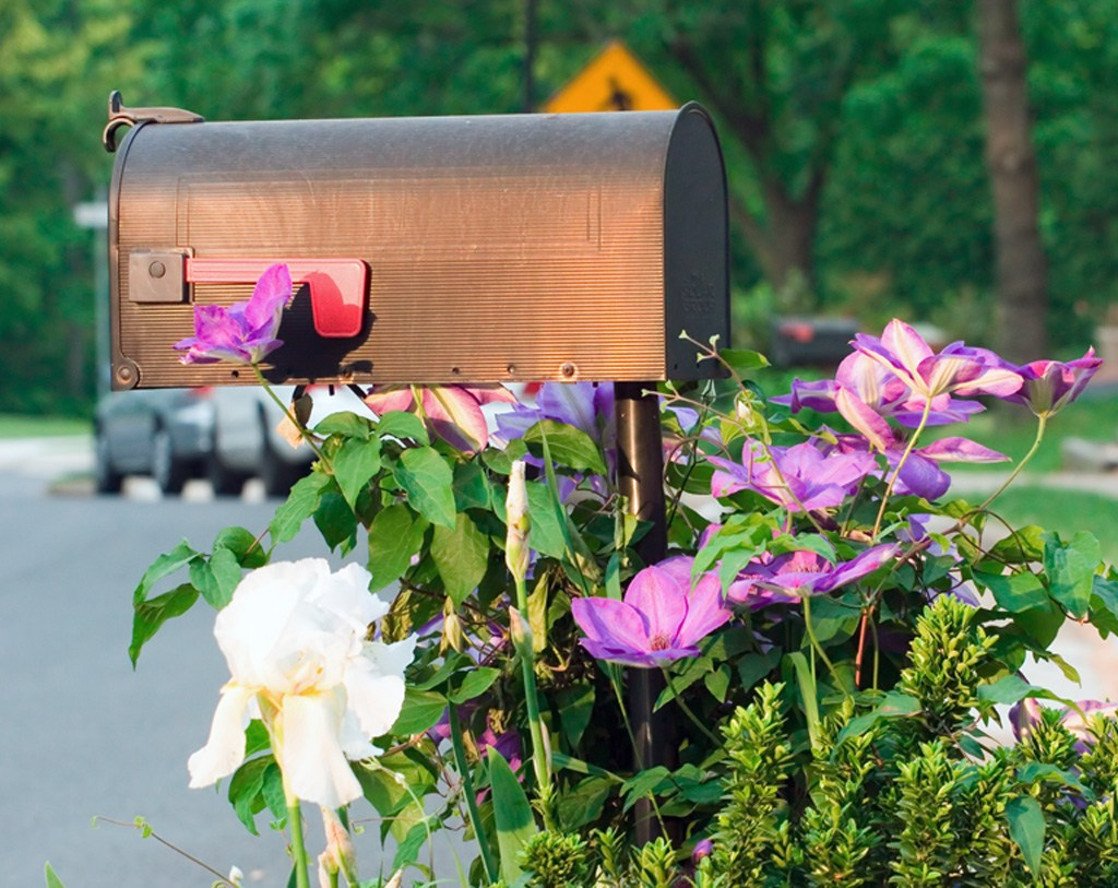A mailbox with curb appeal.