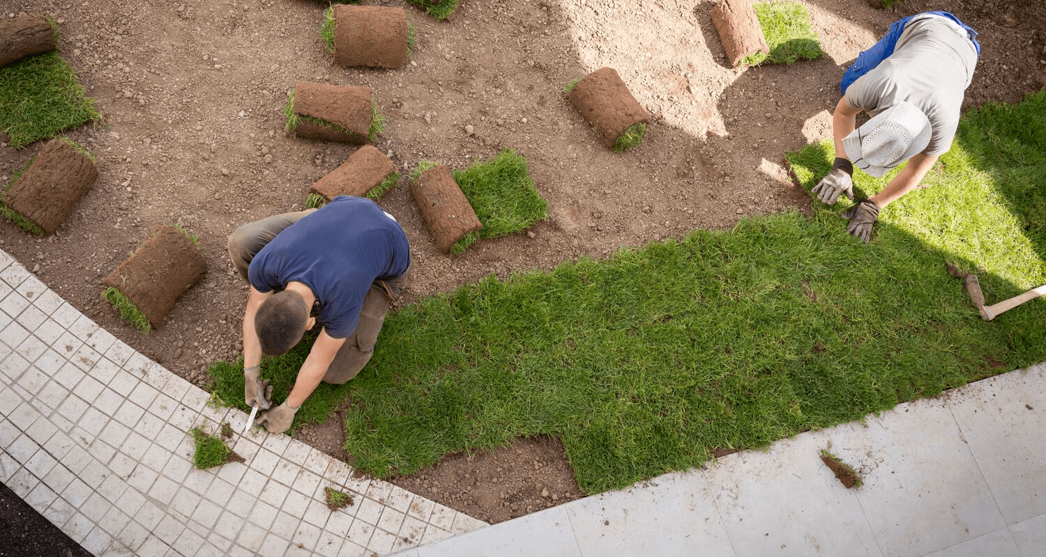 A person fixing their bad yard with new sod to sell a house.