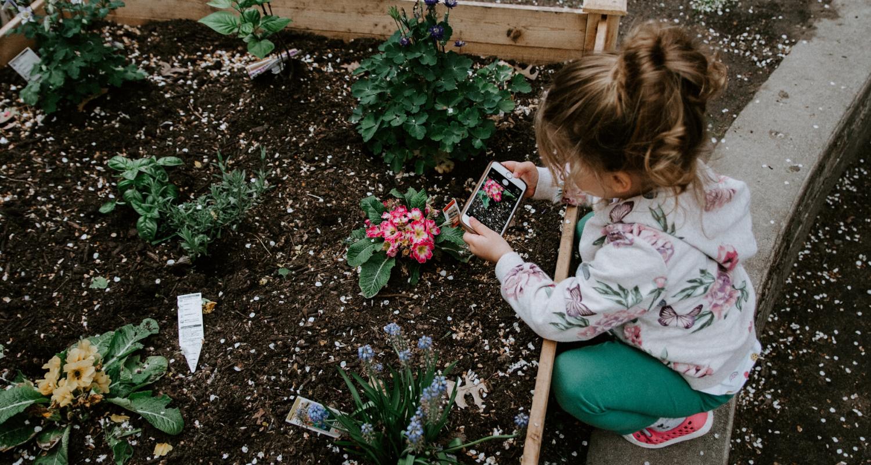 A flower bed is a DIY home improvement idea.