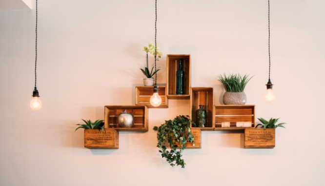 Several boxboard shelves hung on a white wall with plants and books on them.
